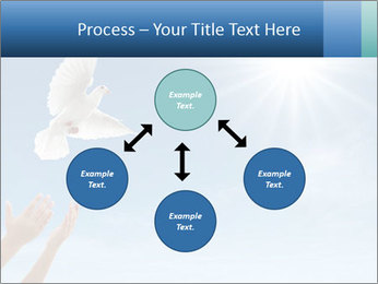 0000083662 PowerPoint Template - Slide 91