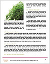 0000083671 Word Templates - Page 4