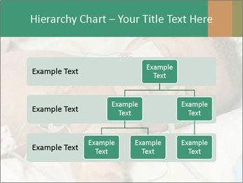 0000083672 PowerPoint Template - Slide 67