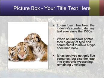 0000083673 PowerPoint Templates - Slide 13