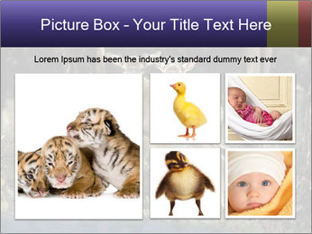 0000083673 PowerPoint Templates - Slide 19