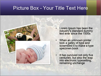 0000083673 PowerPoint Templates - Slide 20