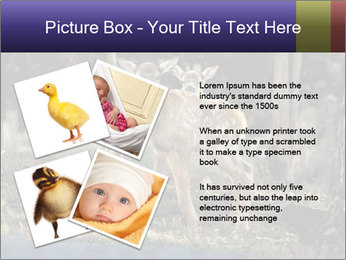 0000083673 PowerPoint Templates - Slide 23