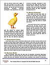 0000083673 Word Template - Page 4