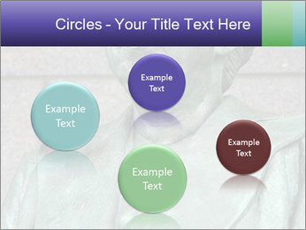 0000083687 PowerPoint Templates - Slide 77