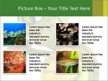 0000083691 PowerPoint Template - Slide 14