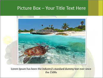 0000083691 PowerPoint Template - Slide 15