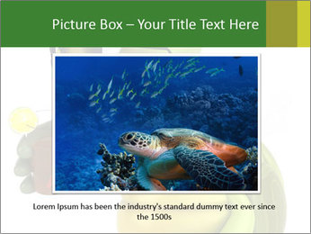 0000083691 PowerPoint Template - Slide 16