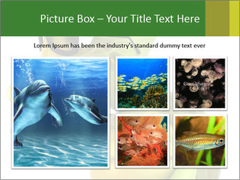 0000083691 PowerPoint Template - Slide 19