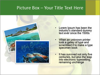 0000083691 PowerPoint Template - Slide 20