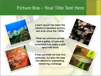 0000083691 PowerPoint Template - Slide 24