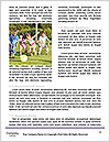 0000083692 Word Templates - Page 4