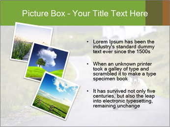 0000083697 PowerPoint Templates - Slide 17