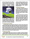 0000083697 Word Template - Page 4
