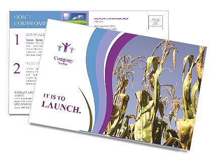 0000083705 Postcard Templates