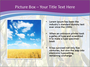 0000083705 PowerPoint Template - Slide 13