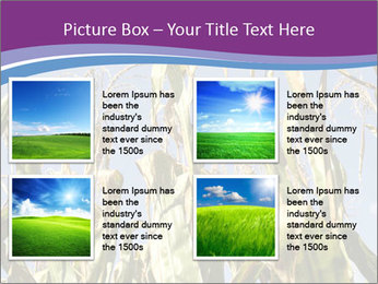 0000083705 PowerPoint Template - Slide 14
