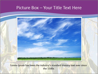 0000083705 PowerPoint Template - Slide 15