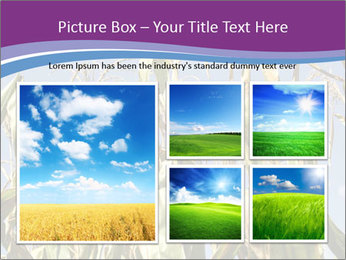 0000083705 PowerPoint Template - Slide 19