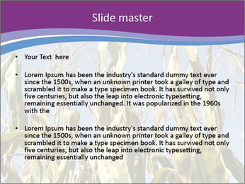 0000083705 PowerPoint Templates - Slide 2