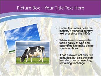 0000083705 PowerPoint Templates - Slide 20
