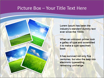 0000083705 PowerPoint Template - Slide 23