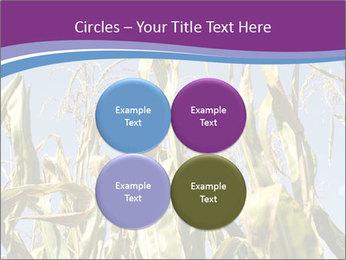 0000083705 PowerPoint Templates - Slide 38
