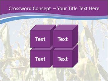 0000083705 PowerPoint Templates - Slide 39
