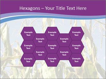 0000083705 PowerPoint Templates - Slide 44