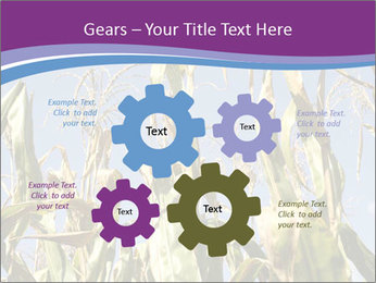 0000083705 PowerPoint Templates - Slide 47