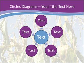 0000083705 PowerPoint Templates - Slide 78
