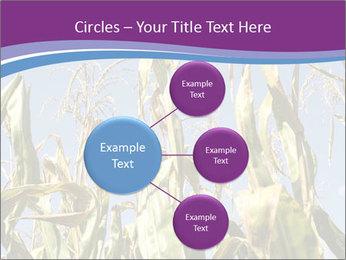 0000083705 PowerPoint Templates - Slide 79