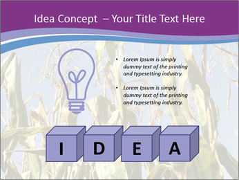 0000083705 PowerPoint Template - Slide 80