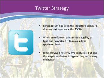 0000083705 PowerPoint Templates - Slide 9