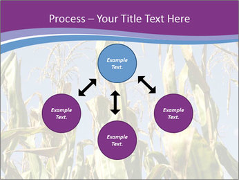 0000083705 PowerPoint Templates - Slide 91