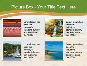 0000083709 PowerPoint Template - Slide 14
