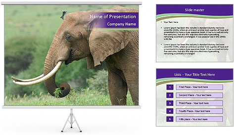 0000083713 PowerPoint Template