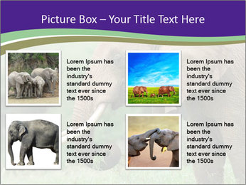 0000083713 PowerPoint Templates - Slide 14