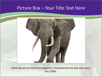 0000083713 PowerPoint Templates - Slide 16