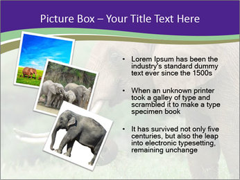 0000083713 PowerPoint Templates - Slide 17