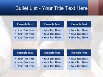 0000083715 PowerPoint Templates - Slide 56