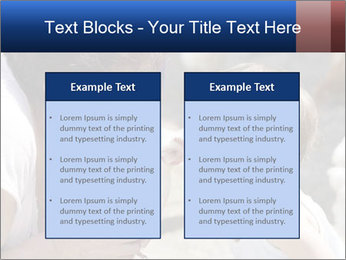 0000083715 PowerPoint Templates - Slide 57