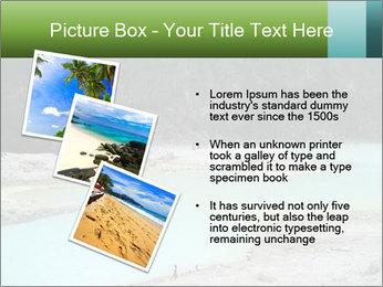 0000083717 PowerPoint Templates - Slide 17