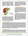 0000083734 Word Template - Page 4