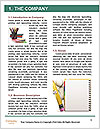 0000083736 Word Template - Page 3