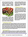 0000083739 Word Template - Page 4