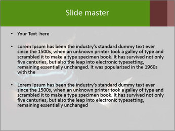 0000083748 PowerPoint Templates - Slide 2