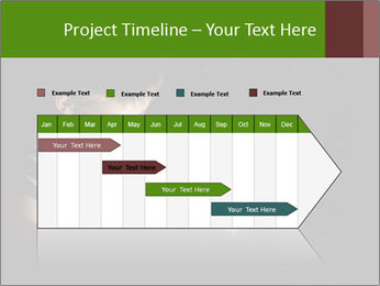 0000083748 PowerPoint Templates - Slide 25