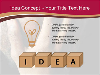 0000083751 PowerPoint Template - Slide 80