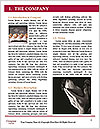 0000083751 Word Template - Page 3